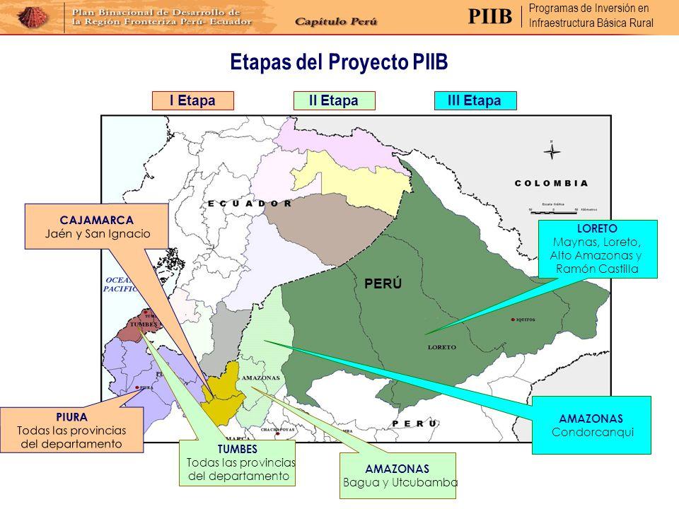 Etapas del Proyecto PIIB