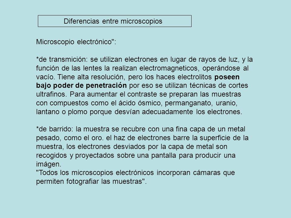 Diferencias entre microscopios