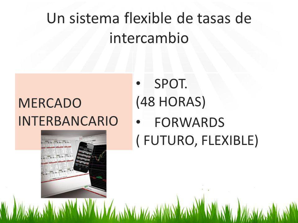 Un sistema flexible de tasas de intercambio