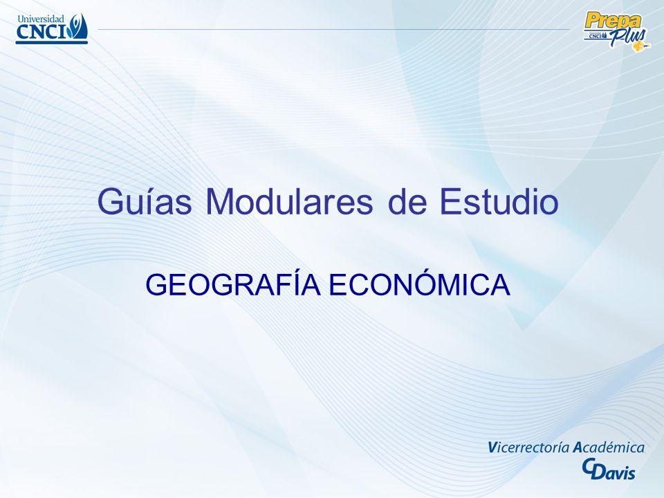 Guías Modulares de Estudio GEOGRAFÍA ECONÓMICA