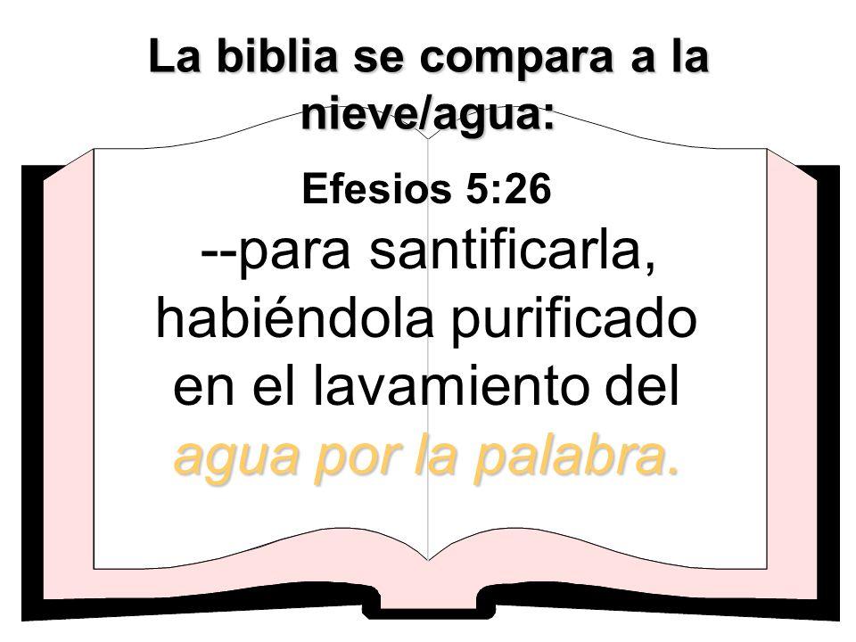 La biblia se compara a la nieve/agua: