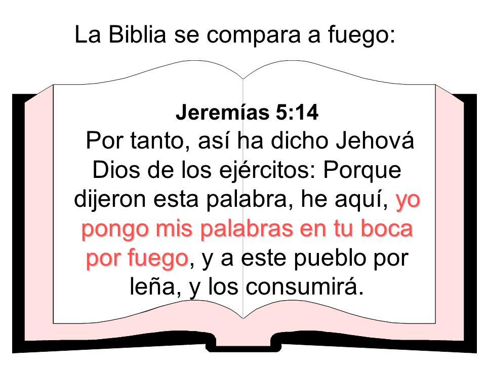 La Biblia se compara a fuego: