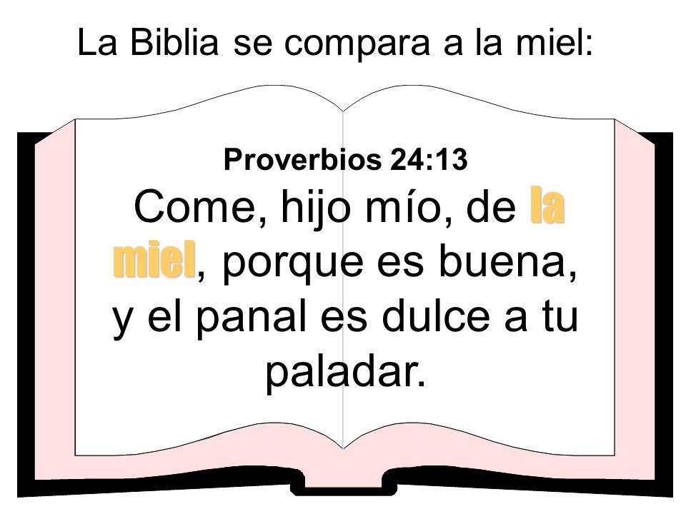 La Biblia se compara a la miel:
