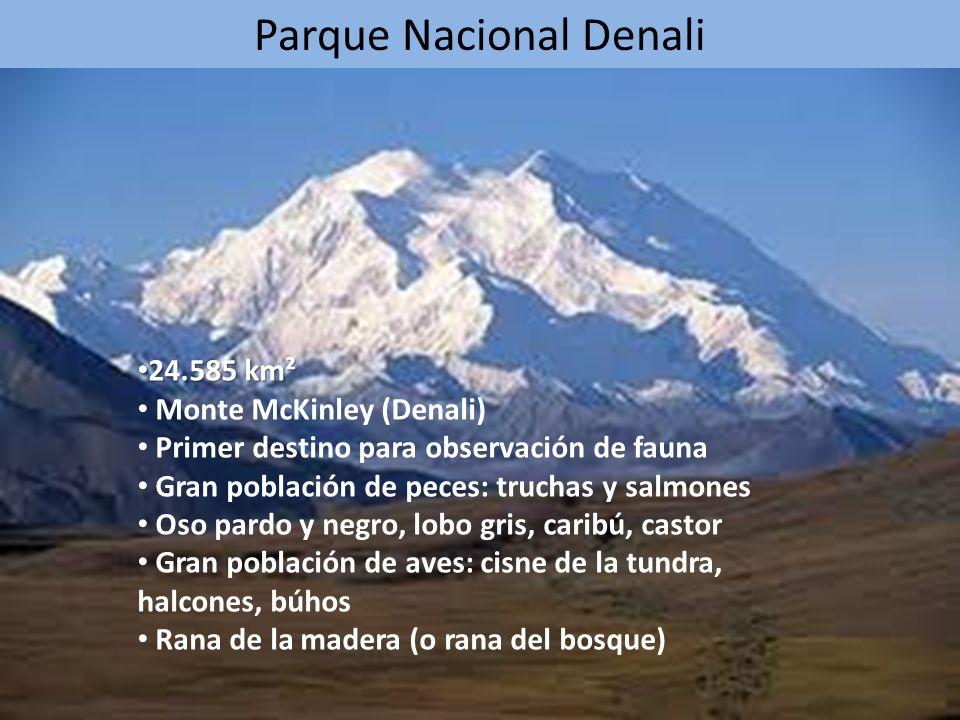 Parque Nacional Denali