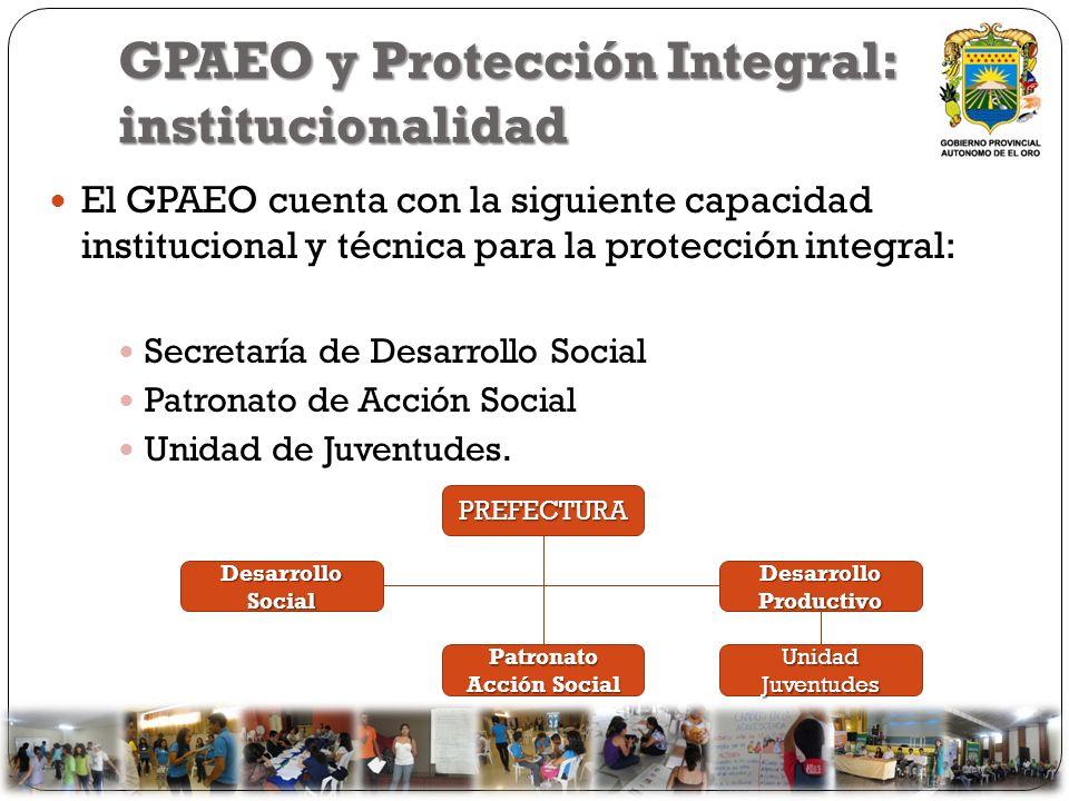 GPAEO y Protección Integral: institucionalidad