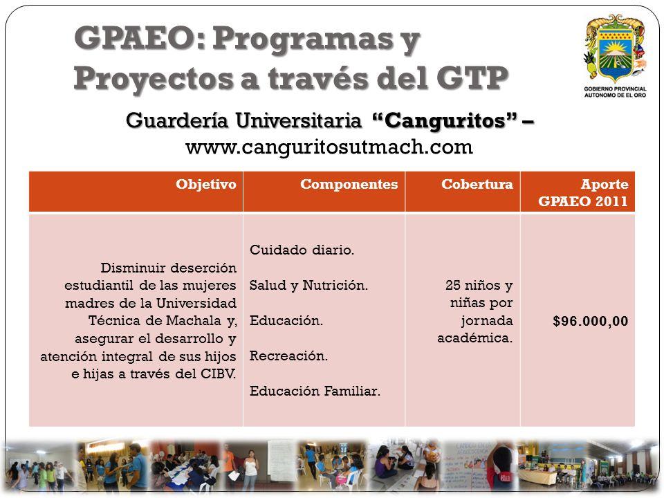 GPAEO: Programas y Proyectos a través del GTP