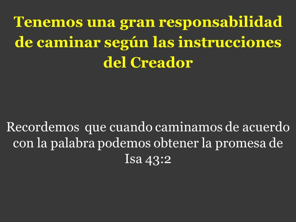 Tenemos una gran responsabilidad de caminar según las instrucciones del Creador