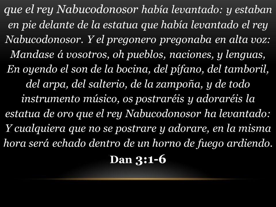 que el rey Nabucodonosor había levantado: y estaban en pie delante de la estatua que había levantado el rey Nabucodonosor.