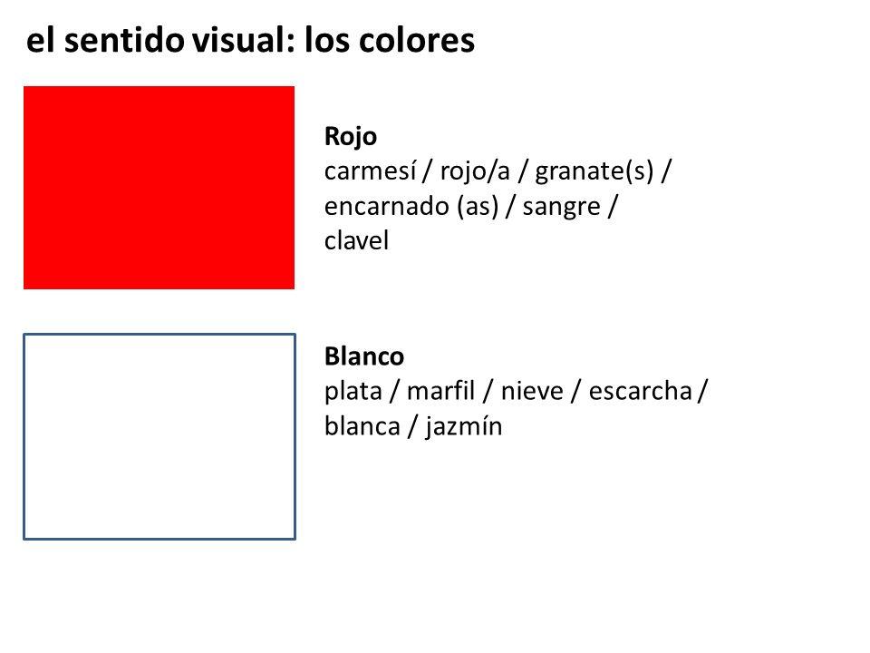 el sentido visual: los colores