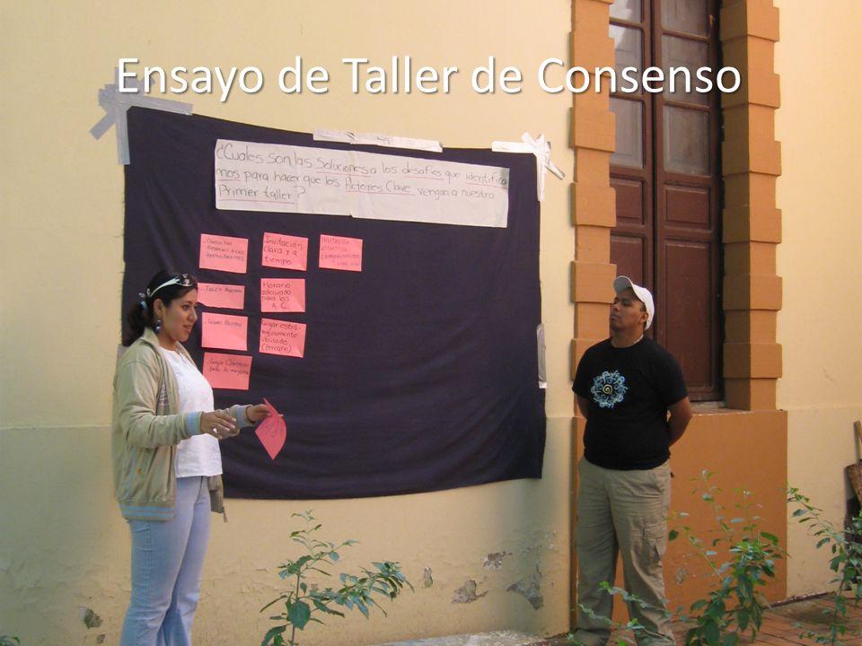 Ensayo de Taller de Consenso