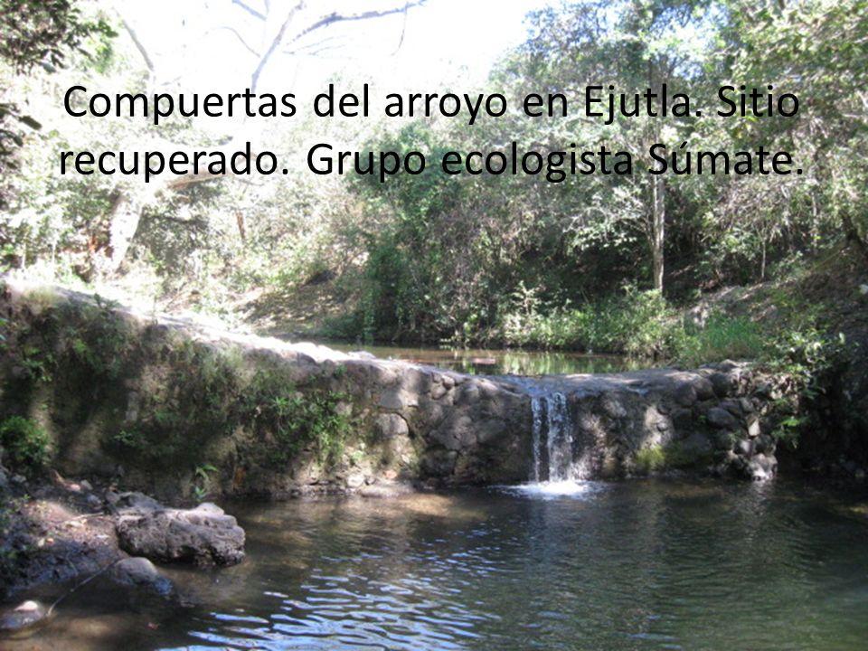 Compuertas del arroyo en Ejutla. Sitio recuperado
