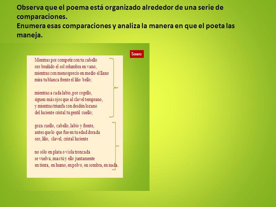 Observa que el poema está organizado alrededor de una serie de comparaciones.