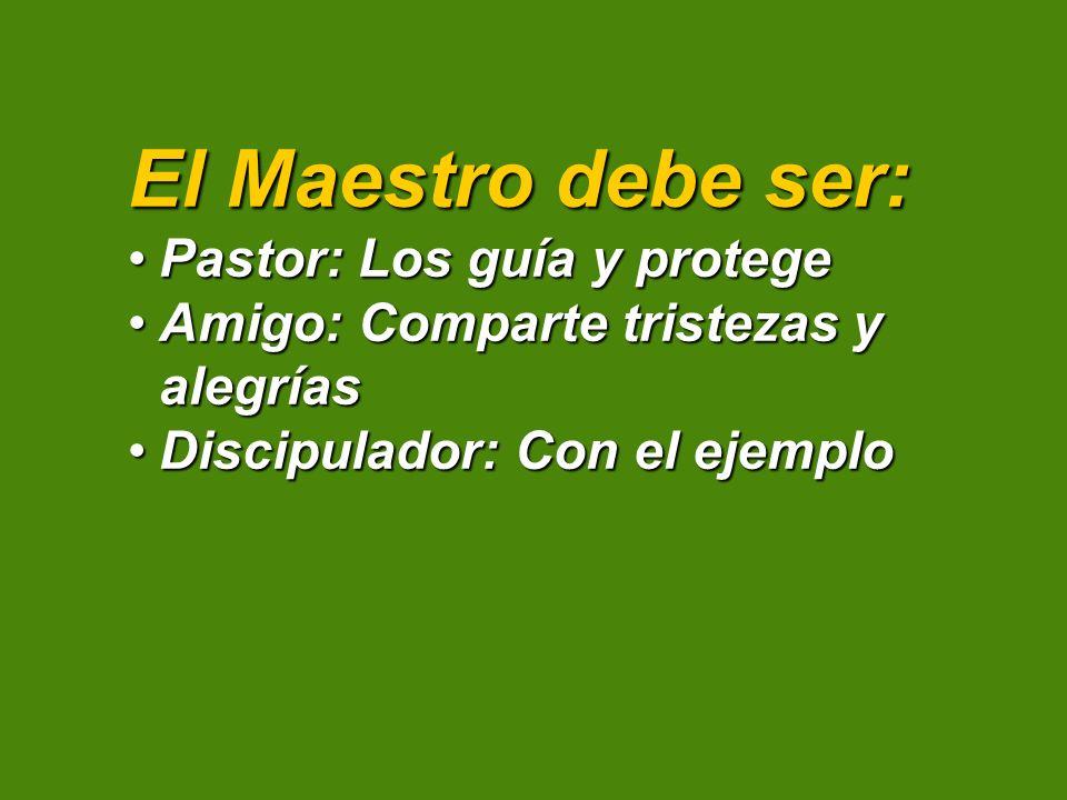 El Maestro debe ser: Pastor: Los guía y protege
