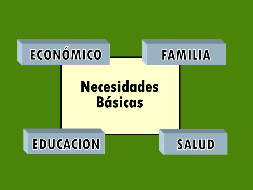 ECONÓMICO FAMILIA Necesidades Básicas EDUCACION SALUD