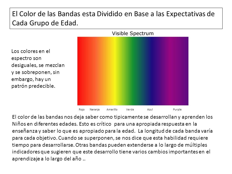 El Color de las Bandas esta Dividido en Base a las Expectativas de Cada Grupo de Edad.