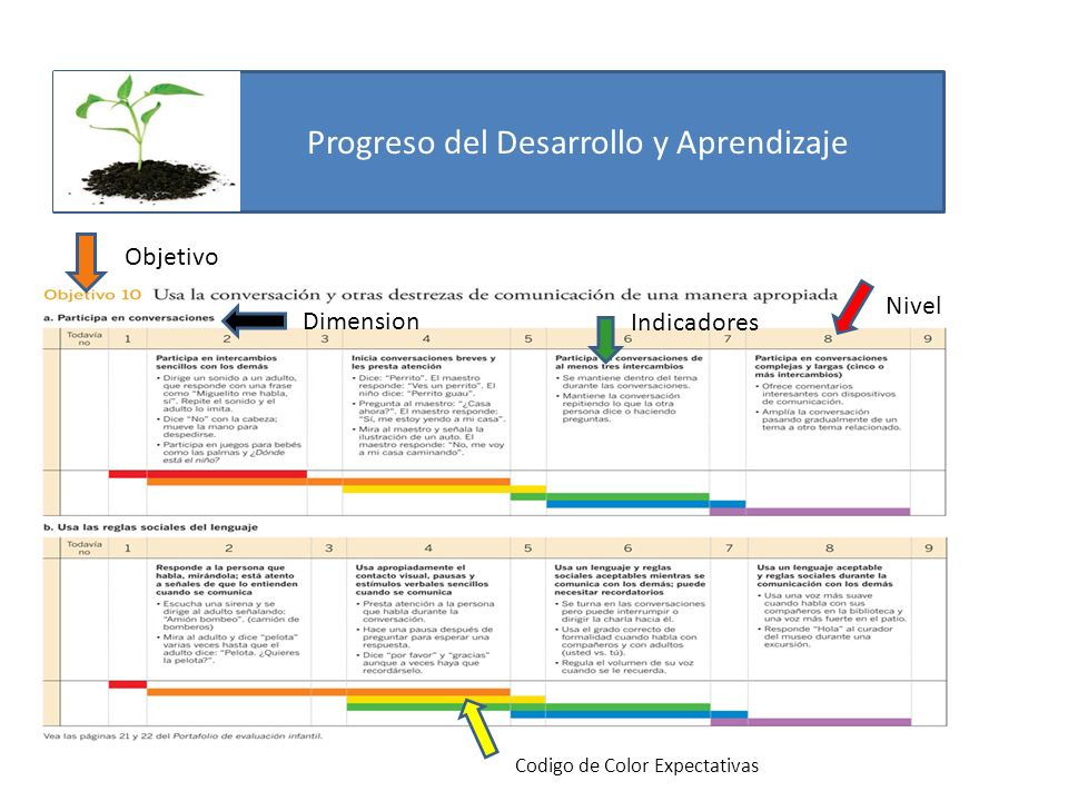 Progreso del Desarrollo y Aprendizaje