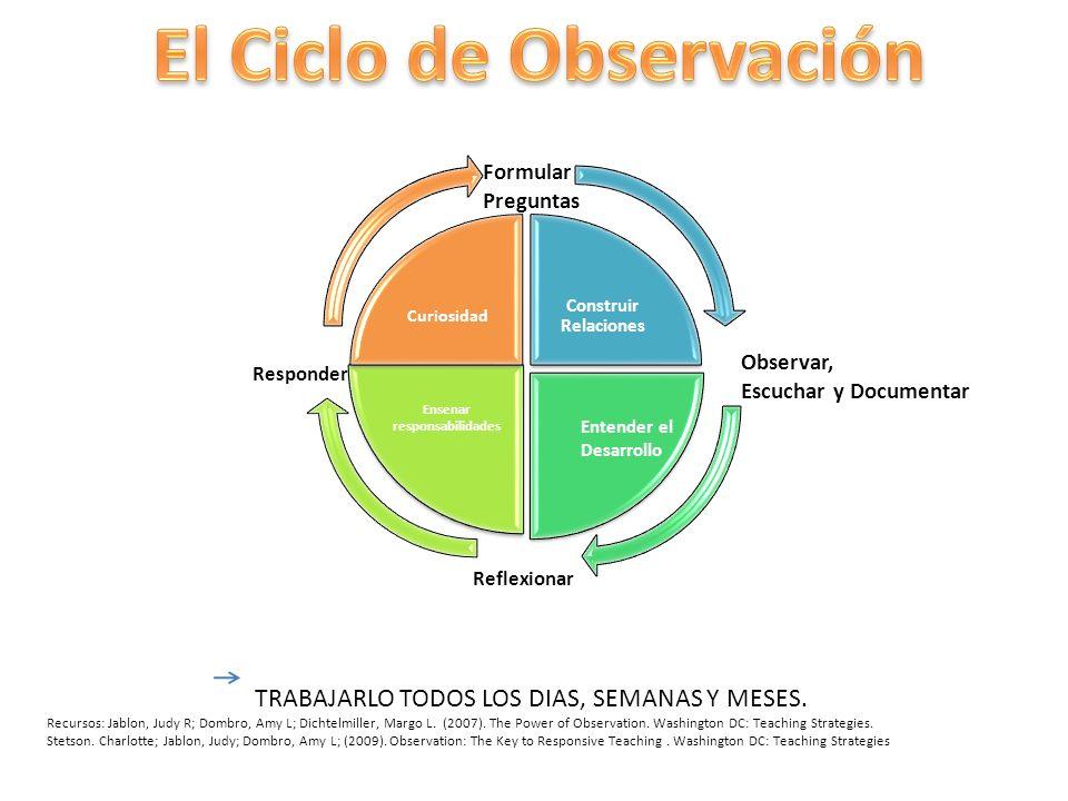 El Ciclo de Observación