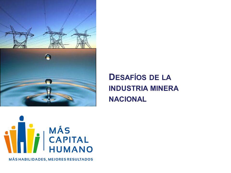 Desafíos de la industria minera nacional
