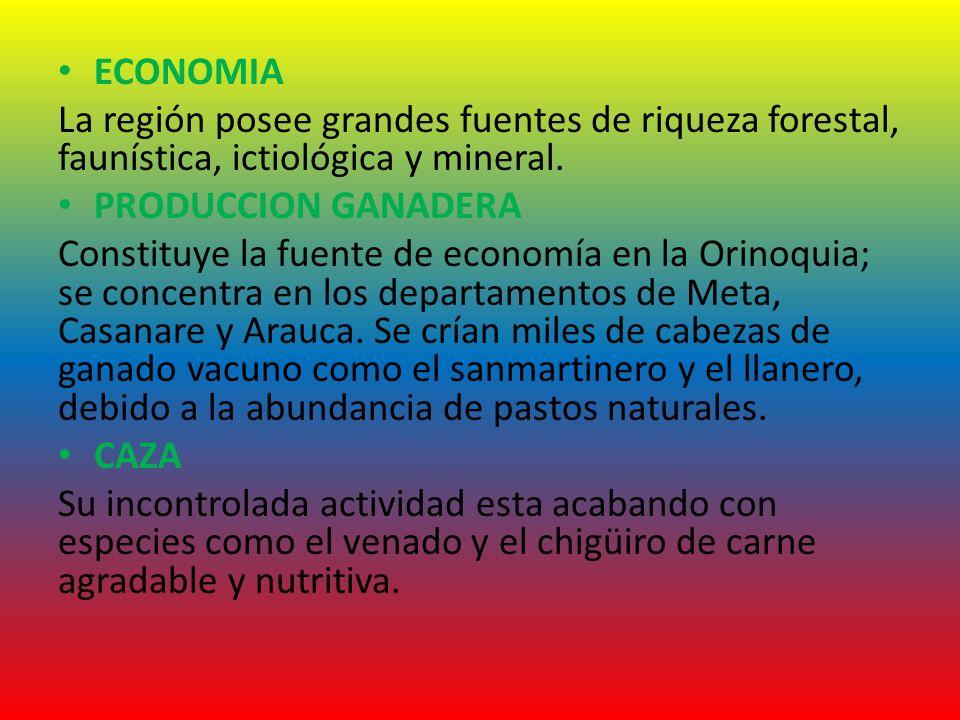 ECONOMIA La región posee grandes fuentes de riqueza forestal, faunística, ictiológica y mineral. PRODUCCION GANADERA.