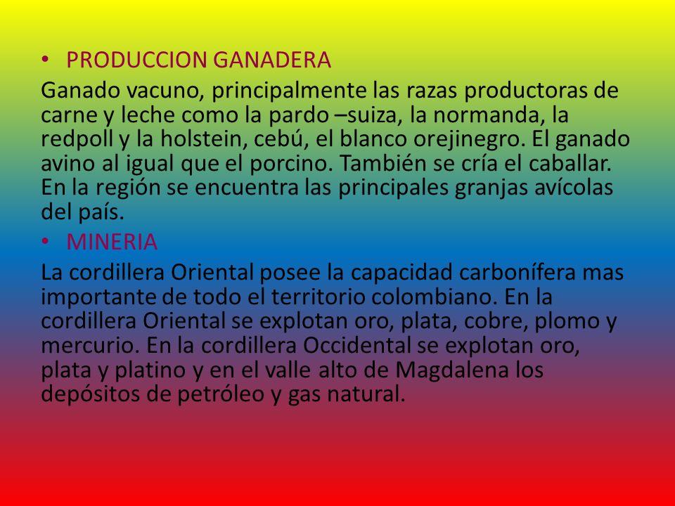PRODUCCION GANADERA