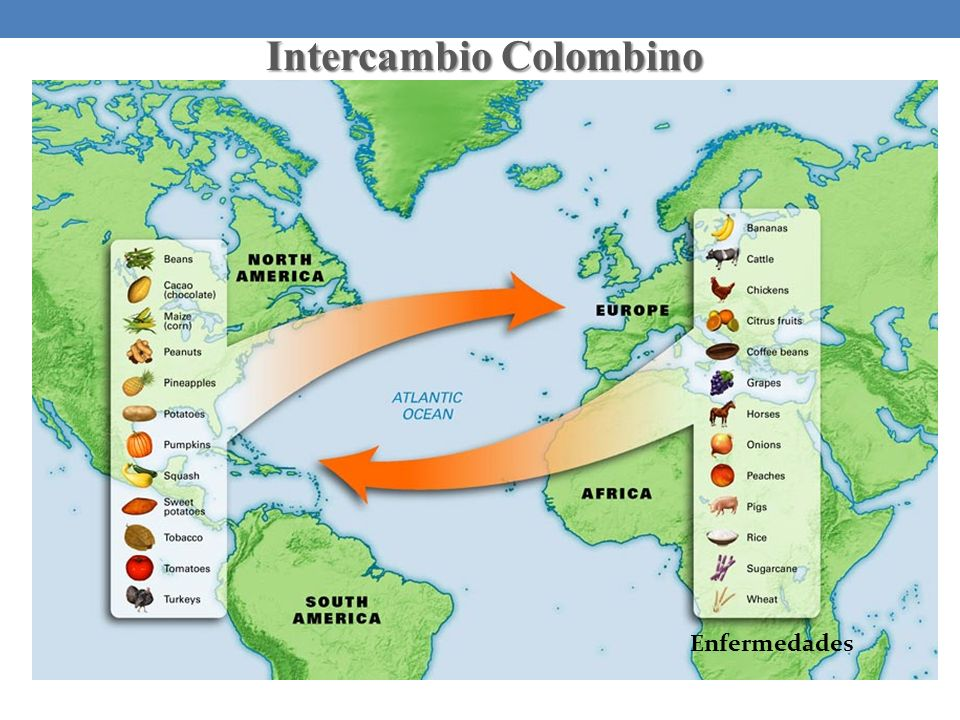 Intercambio Colombino