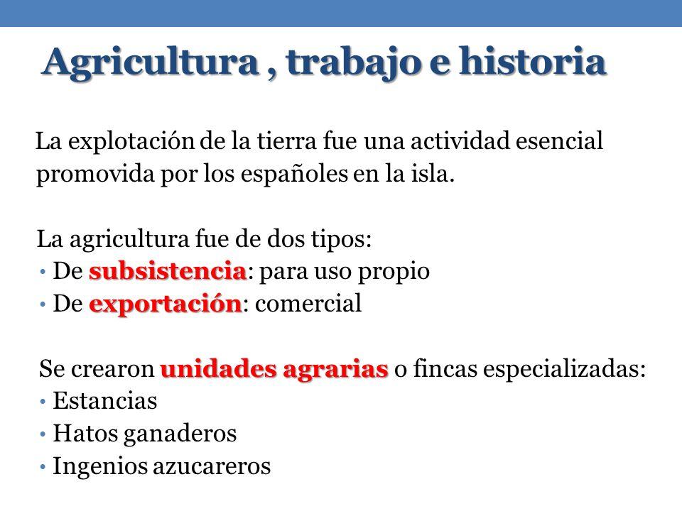 Agricultura , trabajo e historia