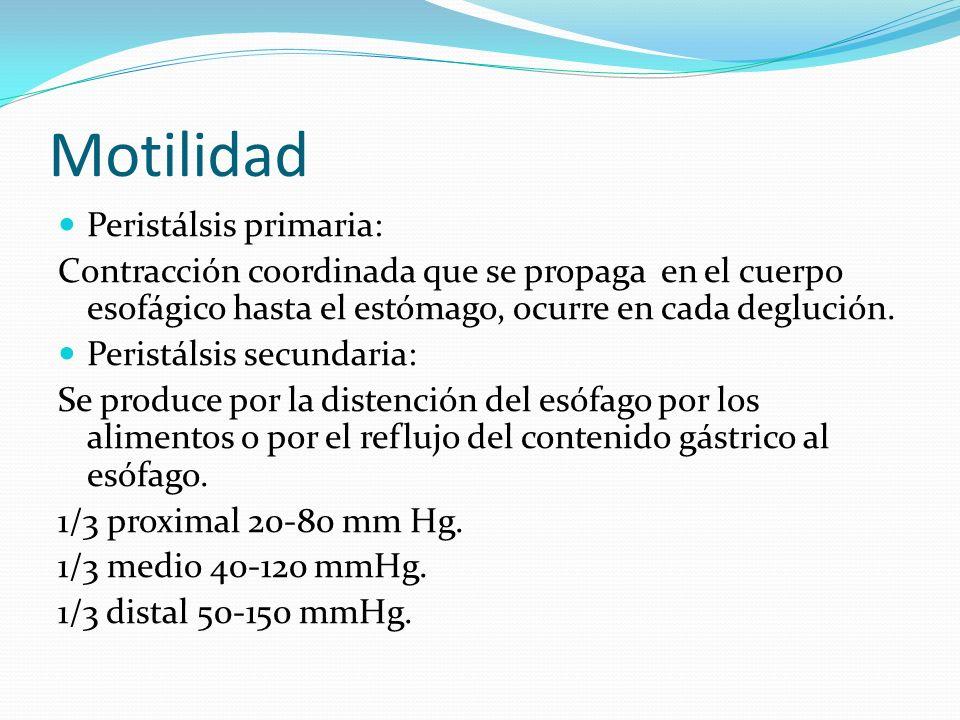 Motilidad Peristálsis primaria: