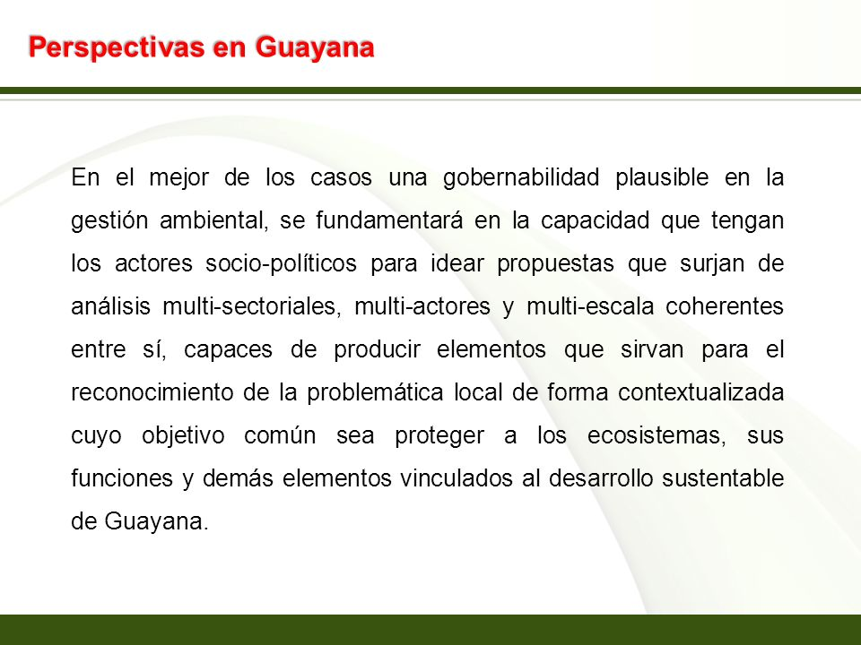 Perspectivas en Guayana