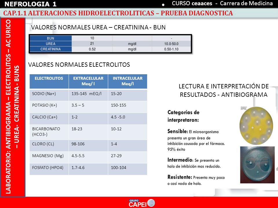 1 MODULO 1 NEFROLOGIA ALTERACION HIDROELECTROLITICA - ppt