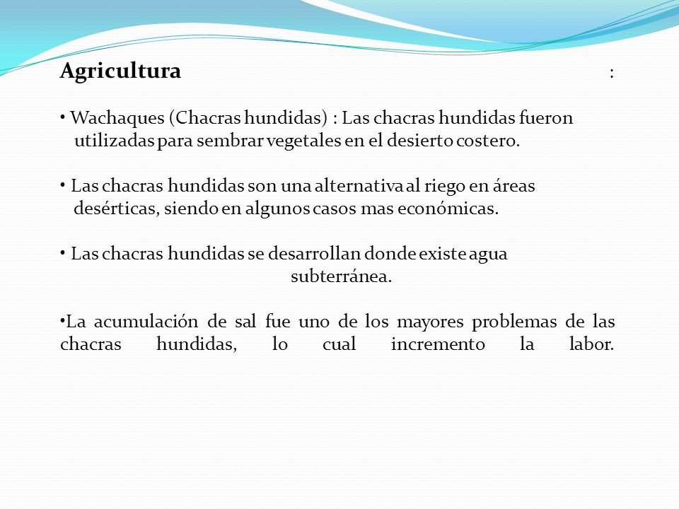 Agricultura : Wachaques (Chacras hundidas) : Las chacras hundidas fueron. utilizadas para sembrar vegetales en el desierto costero.