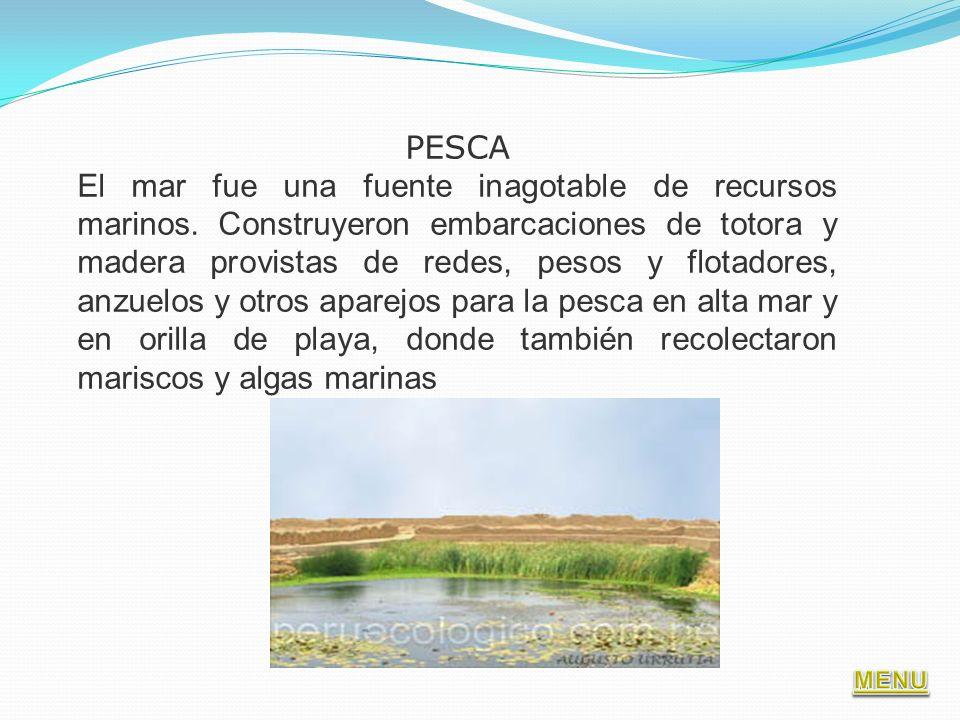 PESCA El mar fue una fuente inagotable de recursos marinos