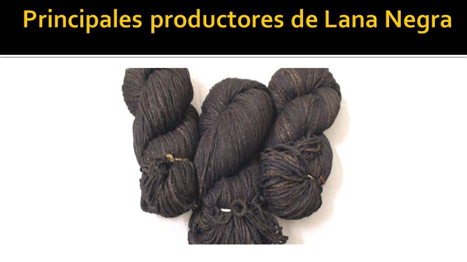 Principales productores de Lana Negra