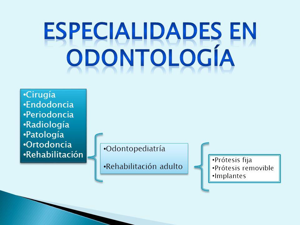ESPECIALIDADES EN ODONTOLOGÍA