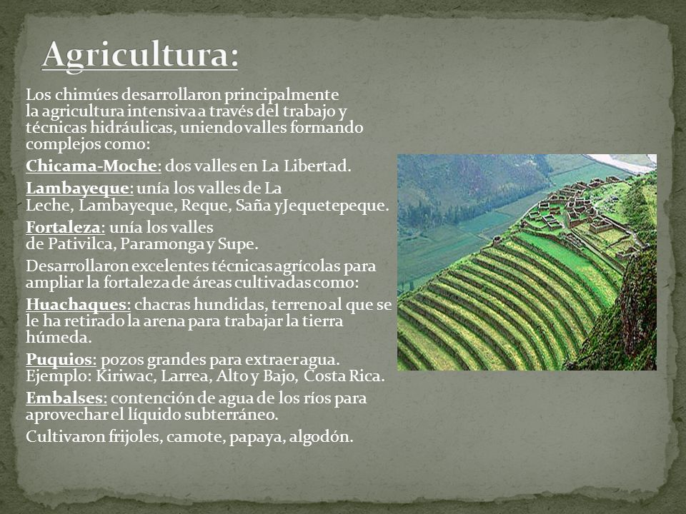 Agricultura: