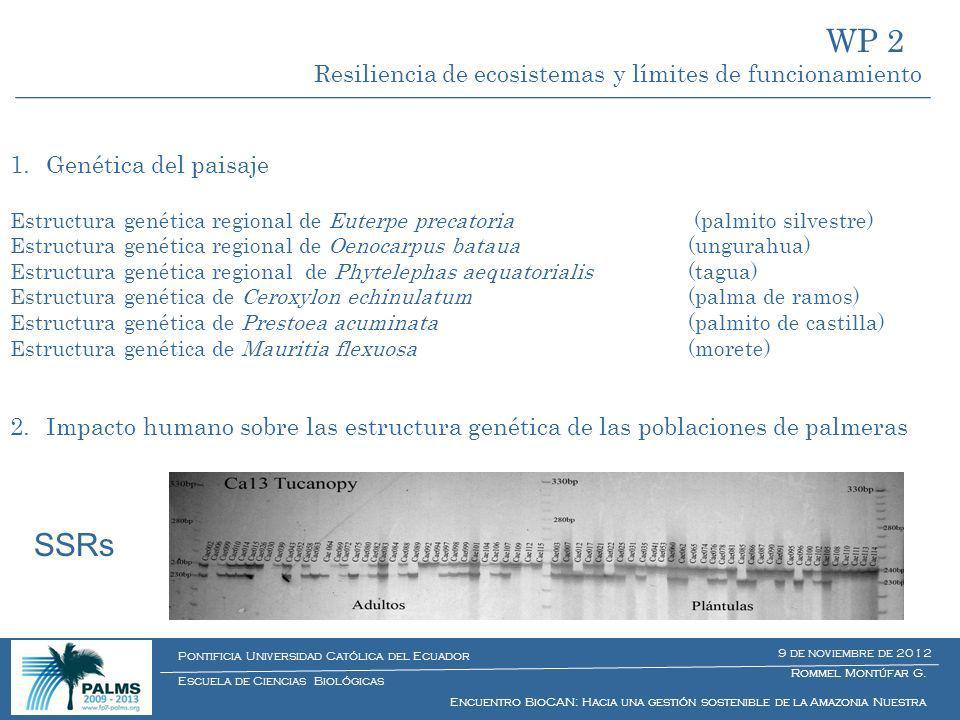 WP 2 SSRs Resiliencia de ecosistemas y límites de funcionamiento