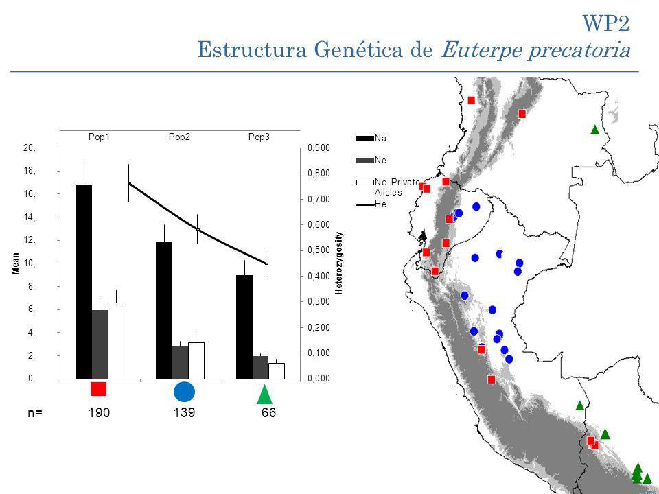 Estructura Genética de Euterpe precatoria