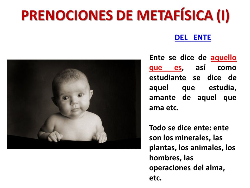 PRENOCIONES DE METAFÍSICA (I)