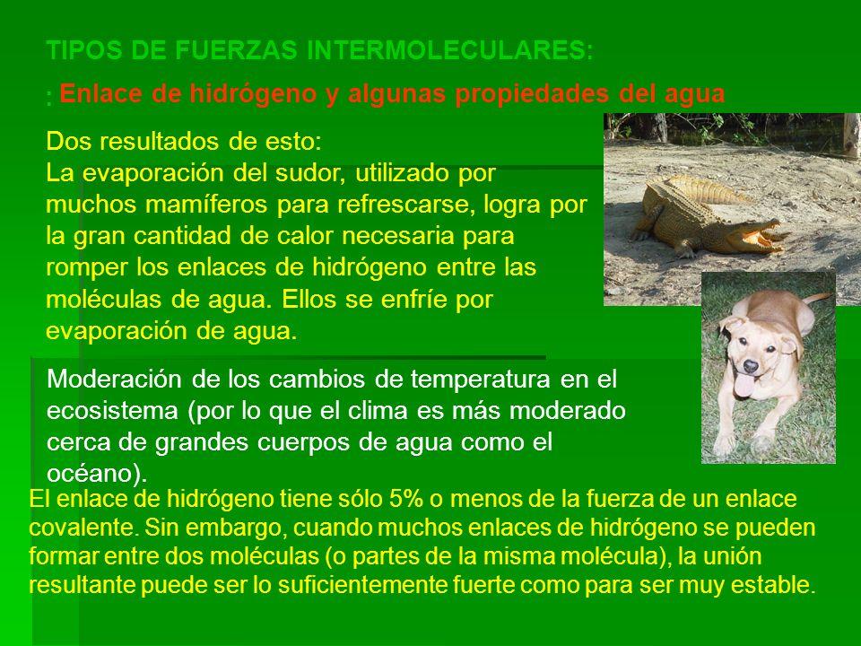 TIPOS DE FUERZAS INTERMOLECULARES: :