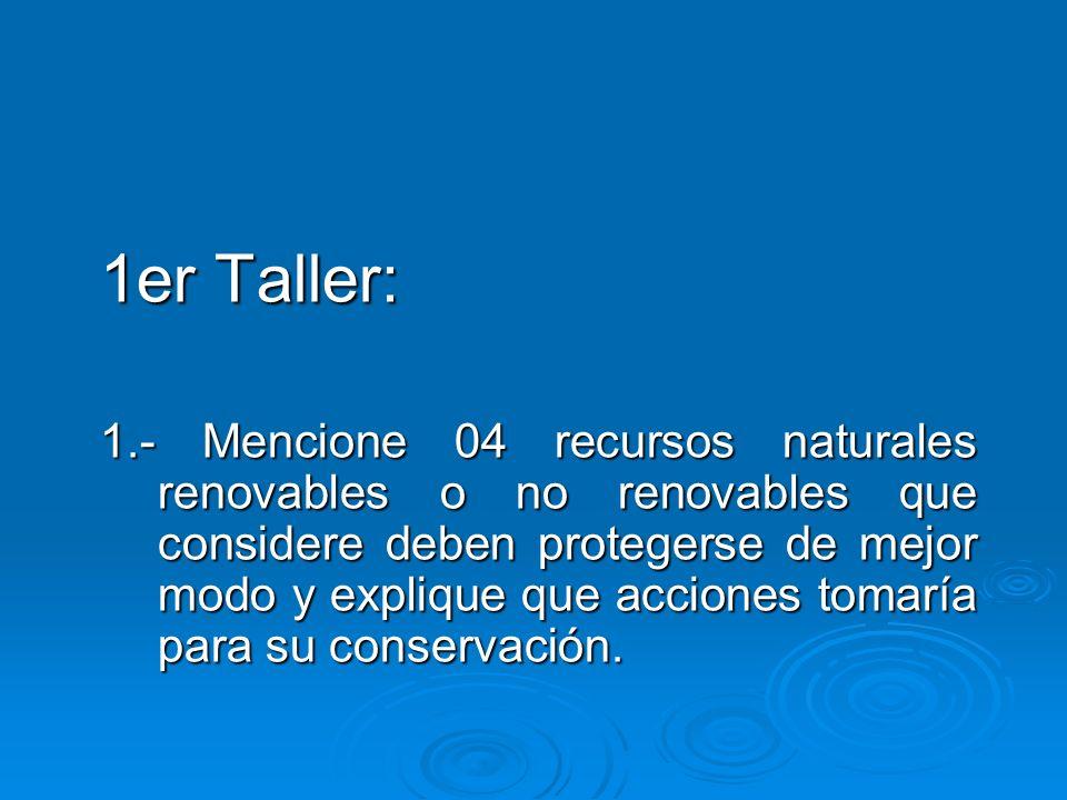 1er Taller: