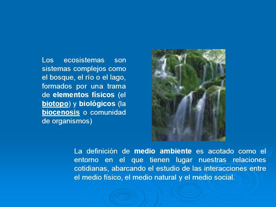 Los ecosistemas son sistemas complejos como el bosque, el río o el lago, formados por una trama de elementos físicos (el biotopo) y biológicos (la biocenosis o comunidad de organismos)