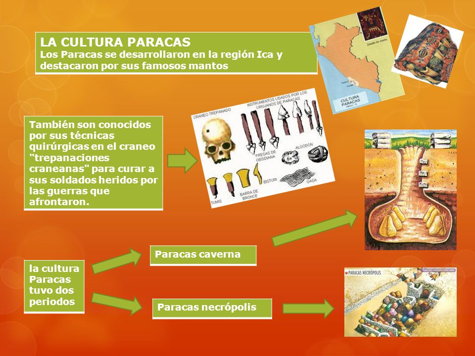 LA CULTURA PARACASLos Paracas se desarrollaron en la región Ica y destacaron por sus famosos mantos.