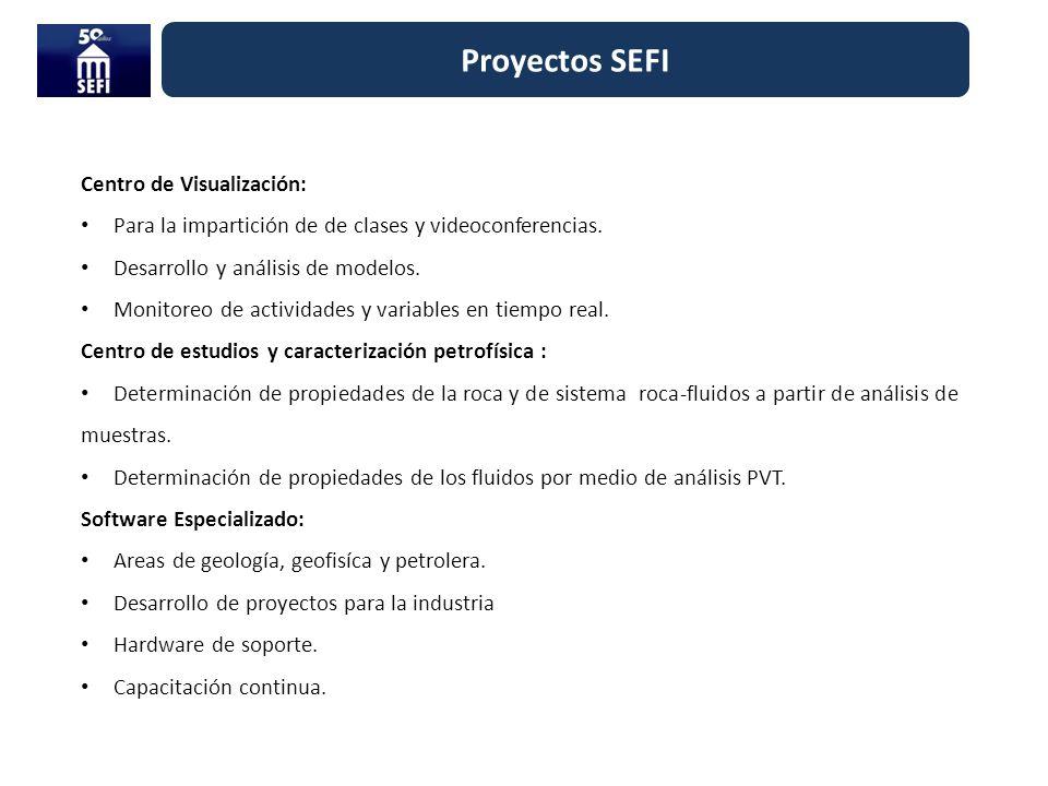 Proyectos SEFI Centro de Visualización: