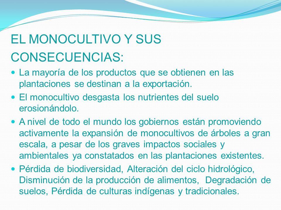 EL MONOCULTIVO Y SUS CONSECUENCIAS: