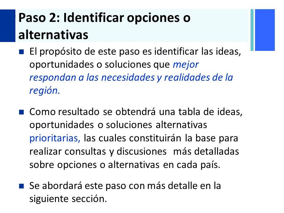 Paso 2: Identificar opciones o alternativas