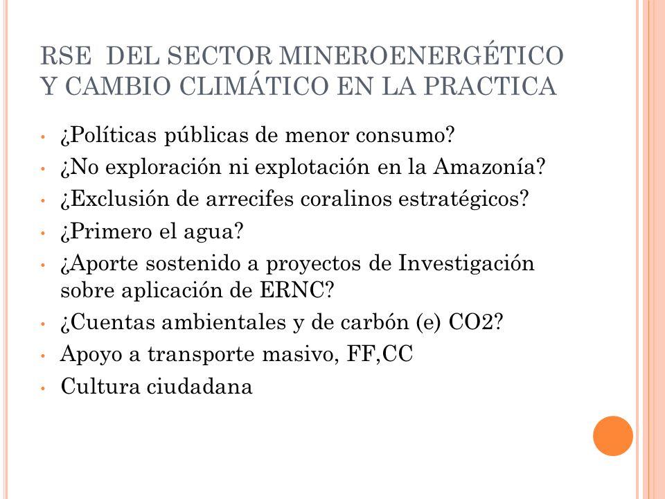 RSE DEL SECTOR MINEROENERGÉTICO Y CAMBIO CLIMÁTICO EN LA PRACTICA