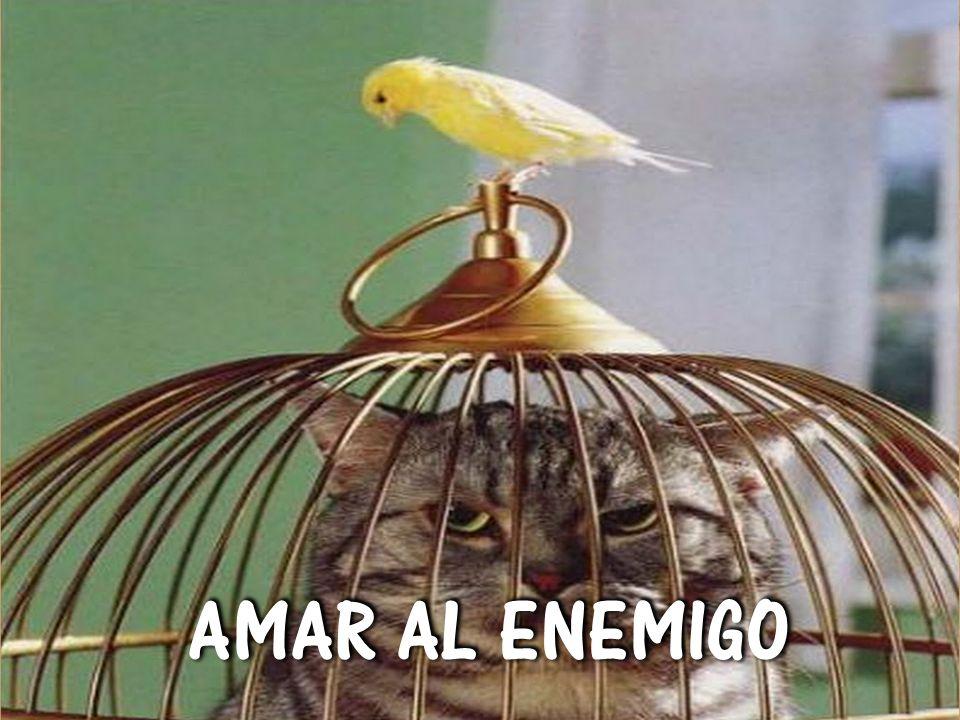 AMAR AL ENEMIGO