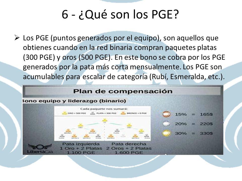 6 - ¿Qué son los PGE