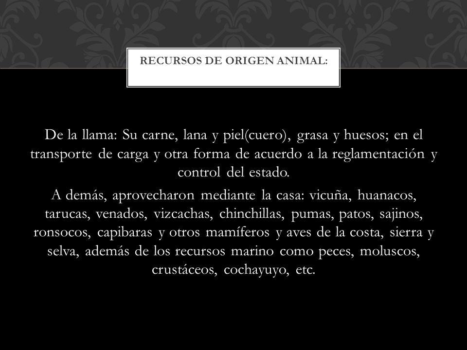 RECURSOS DE ORIGEN ANIMAL:
