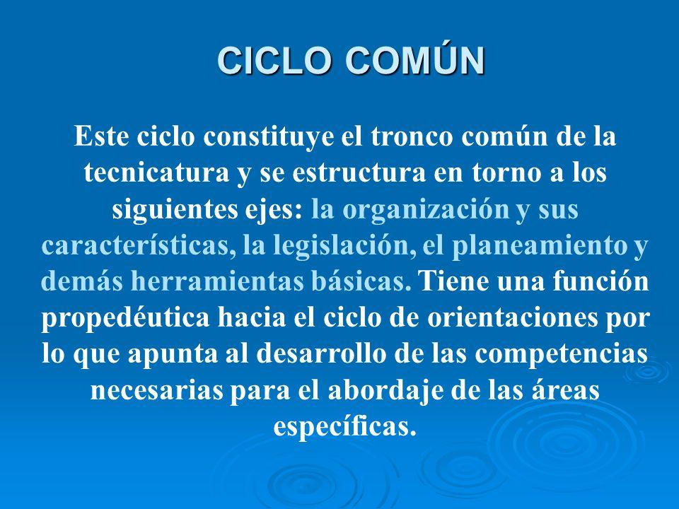CICLO COMÚN