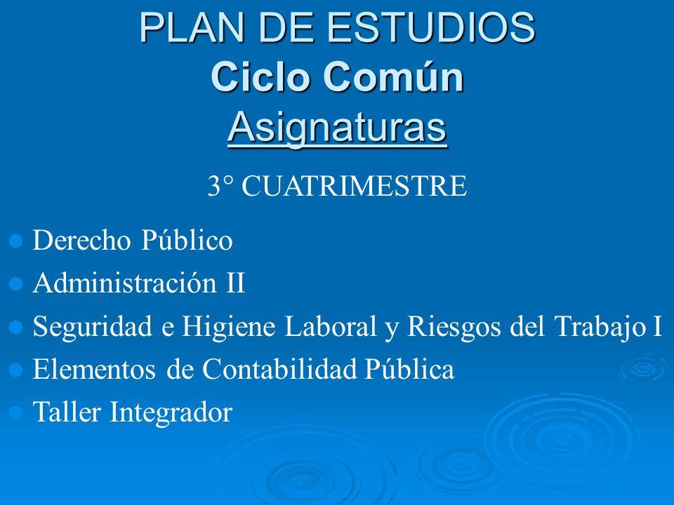 PLAN DE ESTUDIOS Ciclo Común Asignaturas